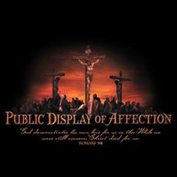 Public Display Of Affection Tee Shirt