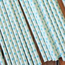 Light Blue Swiss Dots paper straws