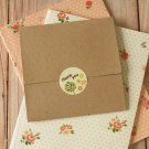 Plain Kraft Brown NO Glue CD sleeve envelopes