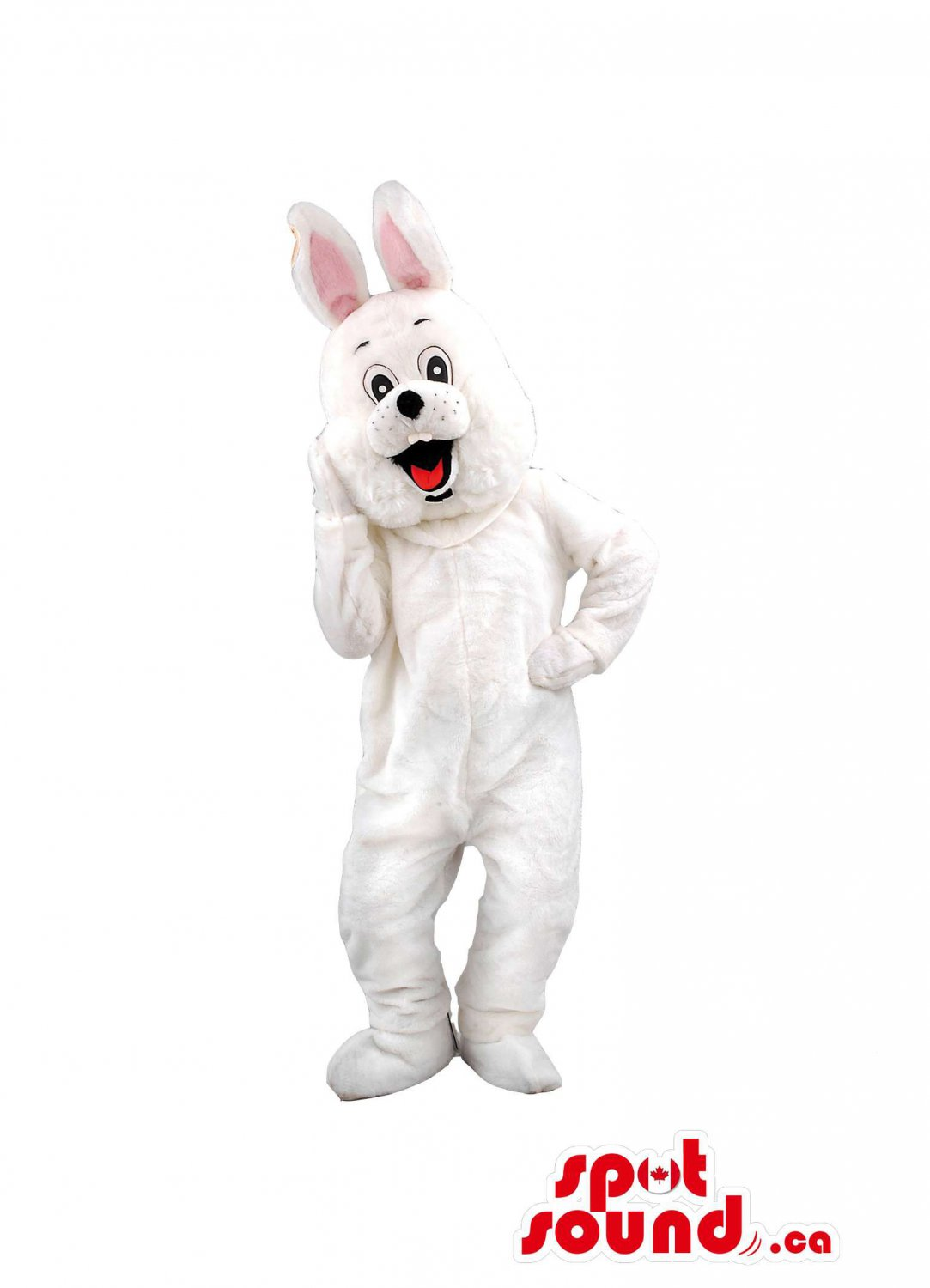 All White And Soft Rabbit With Long Pink Ears And Black Nose