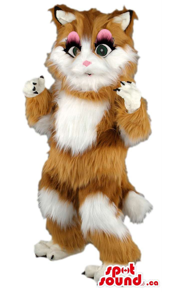 Cat Mascot SpotSound Canada With Brown And White Soft And Long Hair