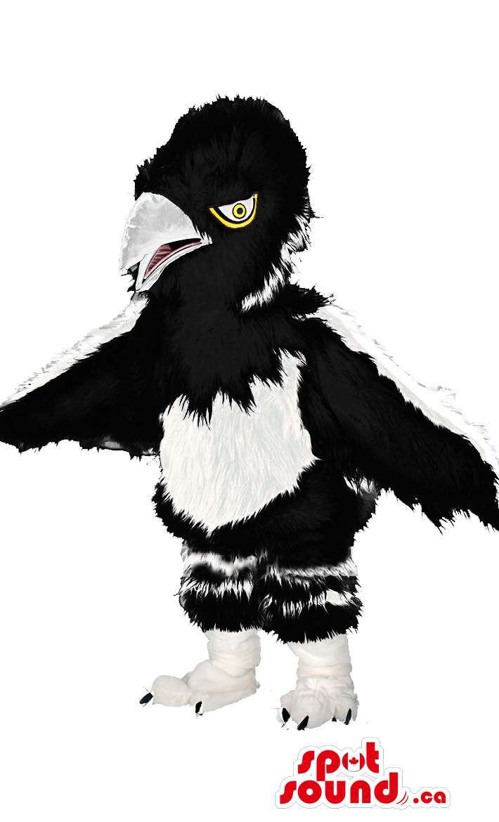 Black And White Bird Wildlife Mascot SpotSound Canada With Beak And Wings