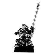 020501602 - Dwarf Hammerer Standard Bearer Body
