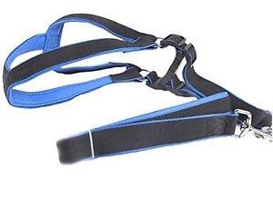Honeystore Pet Nylon Non Pulling Medium Dog Harness Blue Size 3