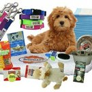 Complete Puppy Starter Kit - Everything You Need In One Kit - 4 Colors Of And -