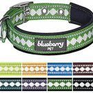 Blueberry Pet Collars For Dogs 5/8 Small Neoprene Padded Dog Collar In Moss and