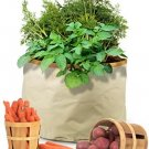 Homegrown Gourmet Root Vegetables Harvest Grow Bag