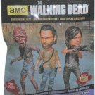 Loot Crate February 2016 Exclusive Walking Dead Blind Packed Figure