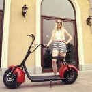 Halei Electric 1000W Big Wheel Motorcycle Electric Scooter Red