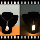 Handmade Real Seashell Light Necklace with Free Delivery (Liguus Virgineus)