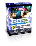 REAPERBOT Graffiti Templates Pro 1