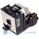 XR-10X XR10X AN-XR10LP Replacement Lamp for Sharp Projectors