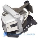 BL-FU185A Replacement Lamp for Optoma Projectors DS216 EW536 HD6700