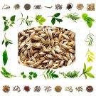 Raw Herb Jau seeds - Barley Grass Seeds-Pure Natural Herbals-25 Gms