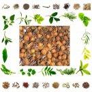 25 Gms Nagkesar Nageshwar Mesua Ferrea Fruit Dry Herb