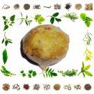 Organic Pure And Natural Raw Herb Majuphal - Mayphal - Quercus Infectoria