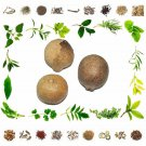 Organic Pure And Natural Raw Herb Bael Phal - Bel Phal - Aegle Marmelos Fru