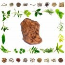 New Raw Herb - Chopchini - SMILAX CHINA - Natural Ayurveda Health Care