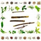 100% Natural -Raw Herb - Biba - Semecarpus Anacardium Linn