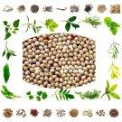 Organic Pure And Natural Raw Herb Gunja Saphed - White Coral bead vine