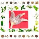 Organic Pure And Natural Dry Fruit Panjab Mishri Natural Ayurveda Health
