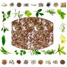 Organic Pure And Natural Raw Herb Gokshur - Talimkhana - Asteracantha longi