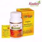 Kudos 100% Pure Natural Herbal Gasona Churna - 50 Gms