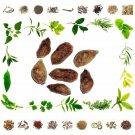 Natural Jamun Beej-Eugenia Jambolana Seed-Syzygium cumini -Natural Health Care