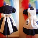 American McGee Spooky Alice In Wonderland Costume Dress Cosplay