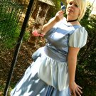 Disney Princess Cinderella Costume Gown Dress Adult