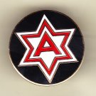 6th Army Hat Pin