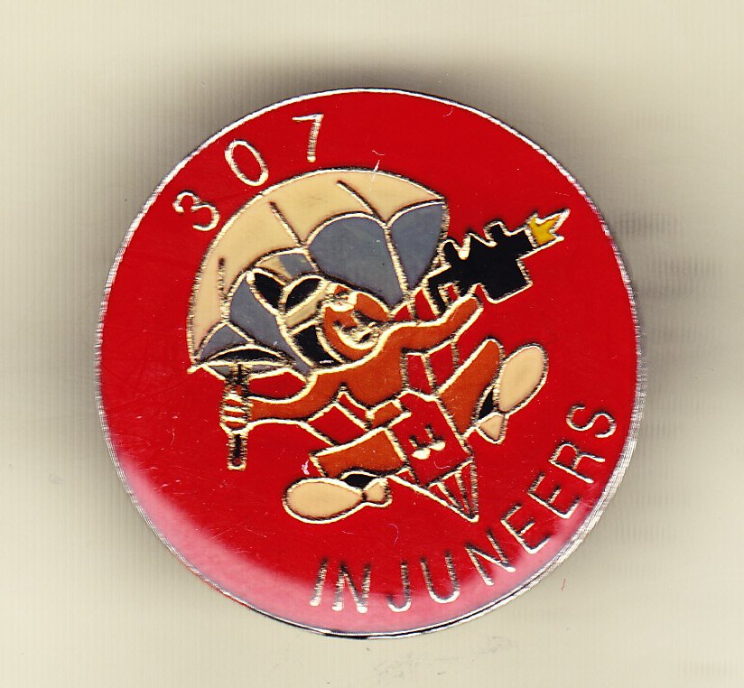 307th Airborne Engineers Hat Pin