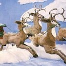 Mr. and Mrs. Santa's Flying Sled