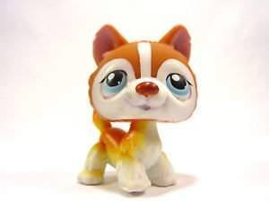 Littlest Pet Shop LPS Husky dog pup 341 Brown Puppy Blue eyes