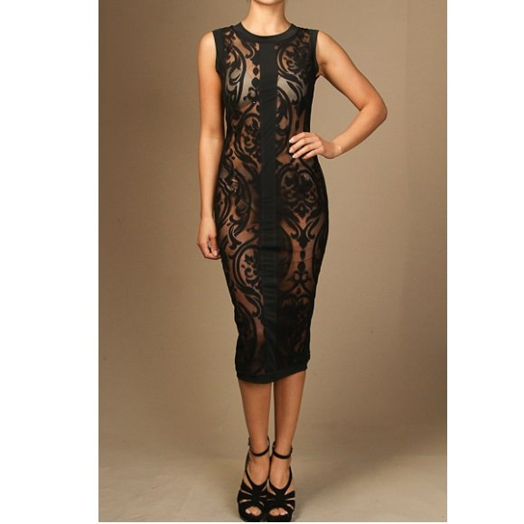 Sleeveless All Mesh with Baroque Detail Bodycon Midi Dress (M)