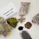 Terrarium/Fairy Garden Kit - Create Your Own Living Terrarium or Fairy Garden