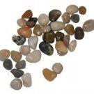 16 Lb Box of River Rocks (FREE SHIPPING)
