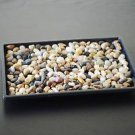 "9GreenBox - Bonsai Humidity Drip Tray 8"" x 10"" with Pebbles Rocks"