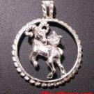 Astrology Zodiac Aries Horoscope Birthday Anti Tarnish .925 Silver Charm Pendant
