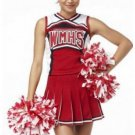 Dallas Cheerleader Costume
