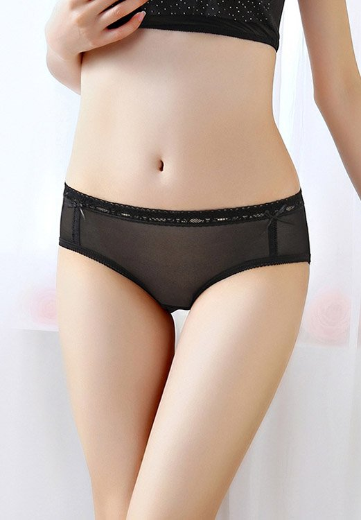 Women's Soft Mesh Semi Sheer Brief Panty