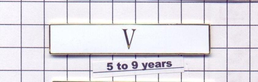 Sheriff's Department 5 to 9 Year Longevity Bar (V) Citation Bar pin back - White