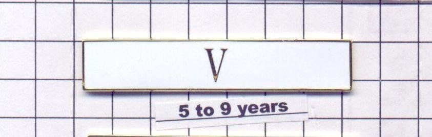 Police Department 5 to 9 Year Longevity Bar (V) Citation Bar (pin back - White)