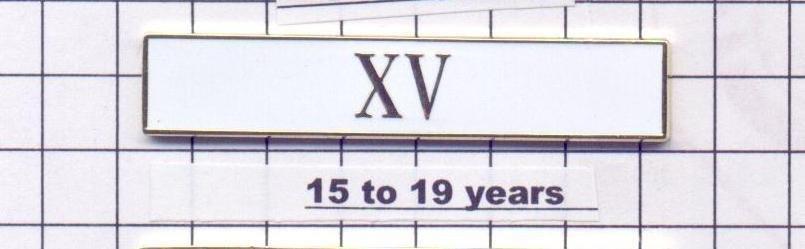 Police Department 15-19 Year Longevity Bar (XV) Citation Bar (pin back - White)
