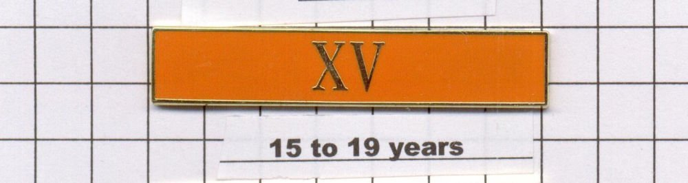 Sheriff's Dept 15-19 Year Longevity Bar (XV) Citation Bar - pin back - Orange