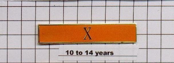 Correction's Dept 10-14 Year Longevity Bar (X) Citation Bar - pin back - Orange