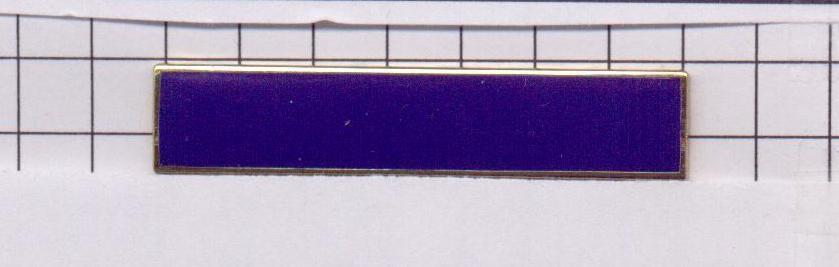 New York City Transit Police (Defunct Agency) Combat Medal Citation Bar