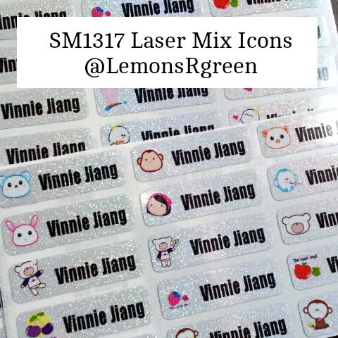 SM1317 Laser Mix Icons Waterproof Name Stickers