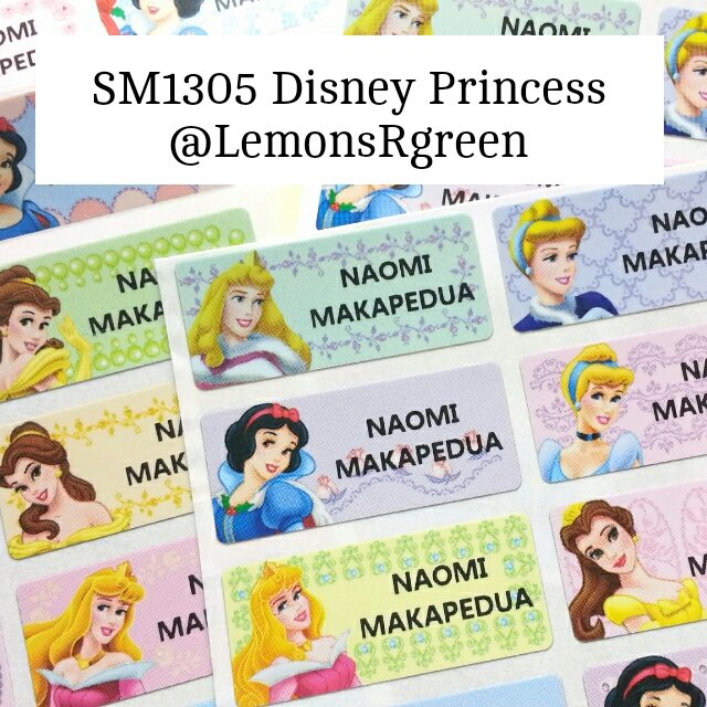 SM1305 Disney Princess Waterproof Name Stickers