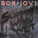 "$16 Bon Jovi ""Slippery When Wet"" ALL HITS CD + Free Bonus Easy Rock Mix CD !"
